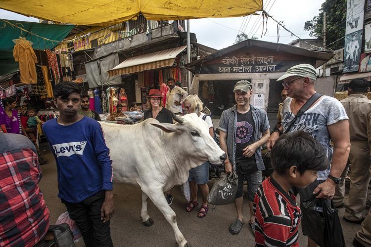 LOW_JN_2019_INDIEN_4439